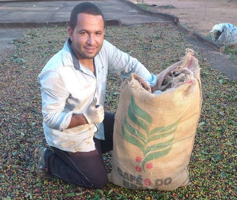 GREEN COFFEE BEANS from Brazil, 100% Arabica beans