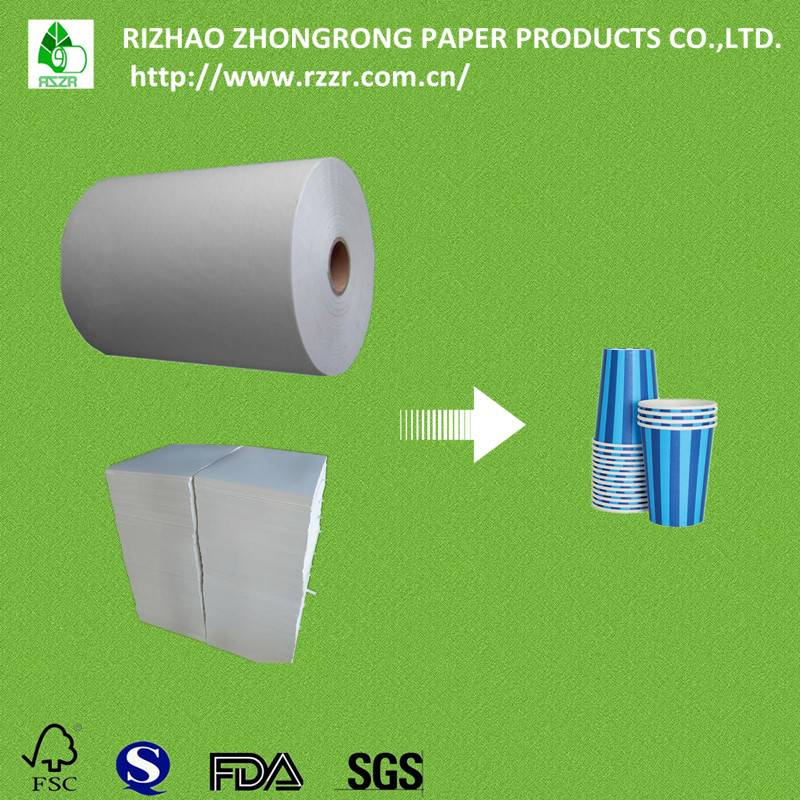 PE coated paper cup raw material in roll/sheet