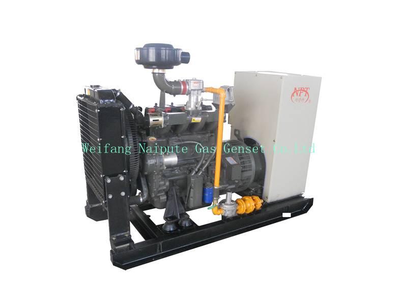 30kW natural gas generator set