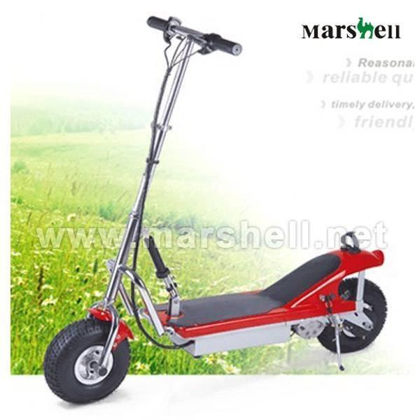 HOT Sell Electric Scooter with CE certificate DR24300