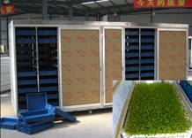 Sale full automatic wheat barley Grass planting and Growing Machine Mobile 0086 15838007835