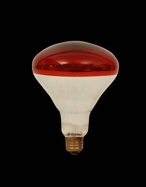 Roasted red R80/R95 reflection infrared ray heat lamps