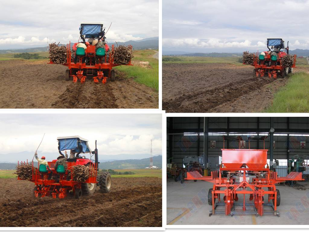 2AMSU two rows Ridging cassava planter machine