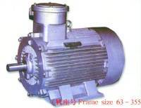 Sell Explosion-Proof Three Phase Induction Motor (YB2)