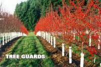 Sell Plastic Tree Guards