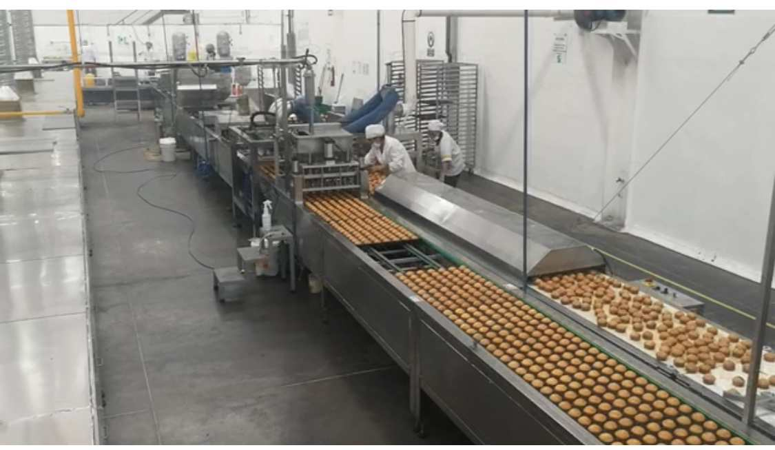 Reliable, trustable cake and donut production machinery maker-Yufeng