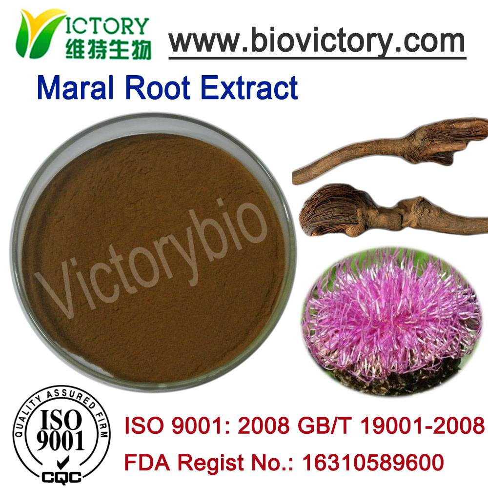 maral root extract Stemmacantha carthamoides
