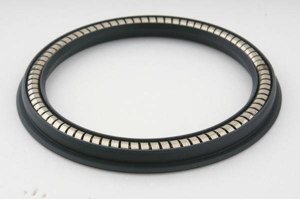PTFE spring seals, spring loaded seals,PTFE rotary seal