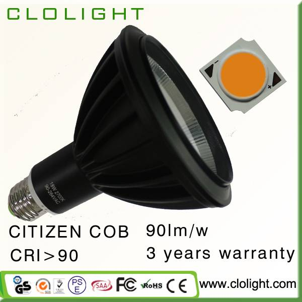 high CRI PAR38 15W COB LED spot light 15/30 degree 90LM/W