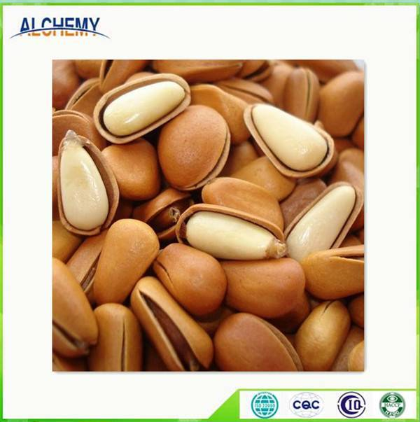 Sell Pine nuts
