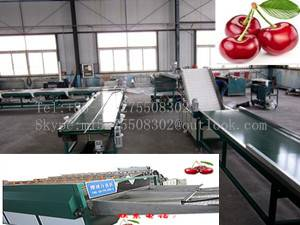 Fruit & Vegetable Processing Machinery