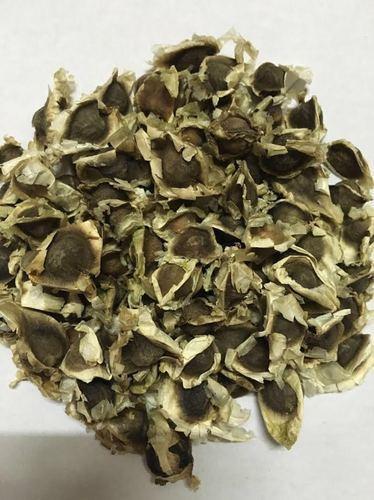 High Quality Moringa Oleifera Seeds ,Leave and oil