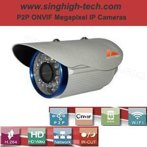 P2p Onvif 960p 1.3MP Waterproof IR IP Camera (NS6261)