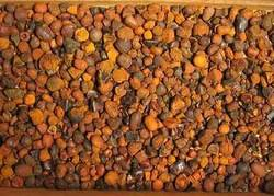 Sell Offer Ox/ Cow Gallstones 50% Discount