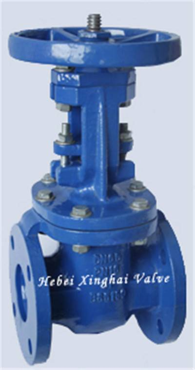 Rising Metal Seat Gate Valve