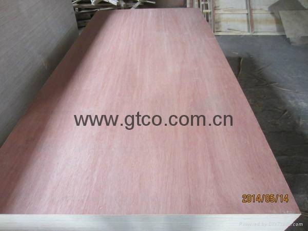 BINGTANGOR FACED POPLAR CORE PLYWOOD