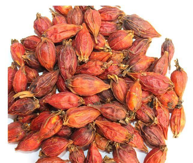 Sell Zhi Zi, Cape Jasmine Fruit, Fructus Gardeniae ,Shan Zhi