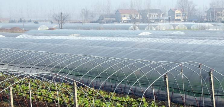 Transparent greenhouse film anti-uv plastic film
