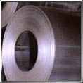 Galvanized Steel Coil Rolls