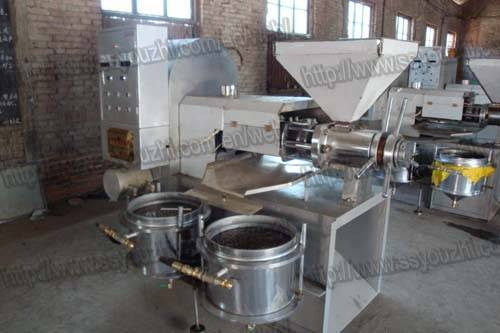 Automatic Coconut Oil Expeller Machinery