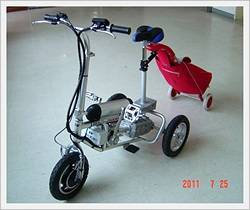 Outdoor Exercise Electric Tricycle
