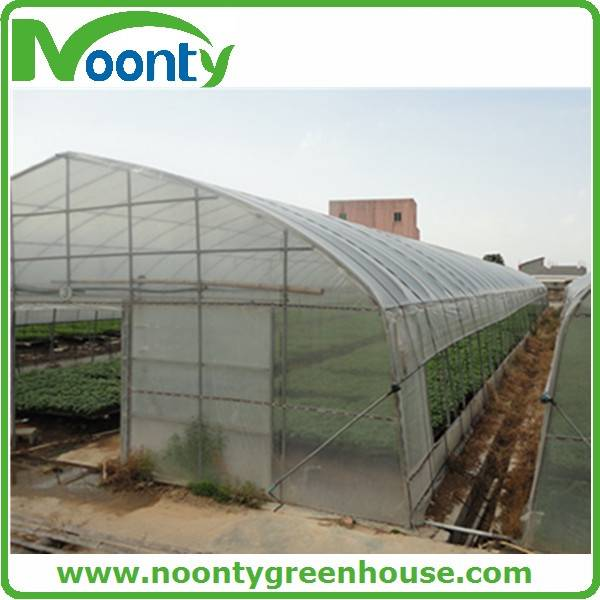 Commercial Tunnel Greenhouse