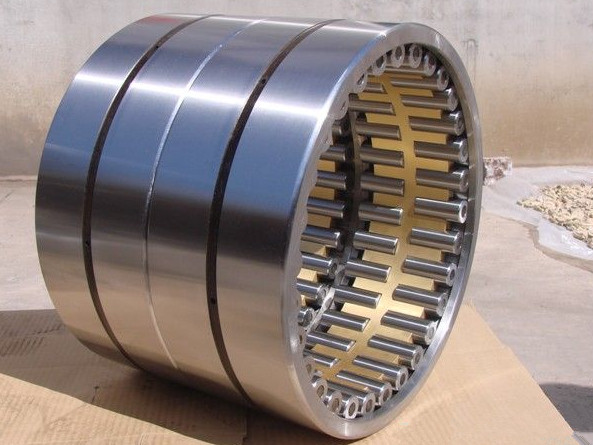 Germany bearing F-219593 Full Complement Cylindrical Roller Bearing 25x42.51x12mm without Outer Rin