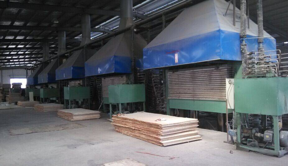 plywood hot press, film faced plywood hot press machine