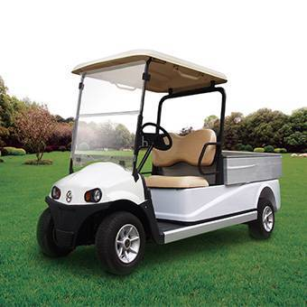 2-Seater Electric Golf Cart with Cargo Box