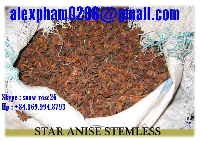 Star Aniseed with Stem, Stemless/ Aniseed