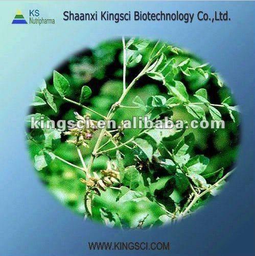 High Quality Licorice Root Extract Clycyrrhizic Acid Monoammonium Salt 98%