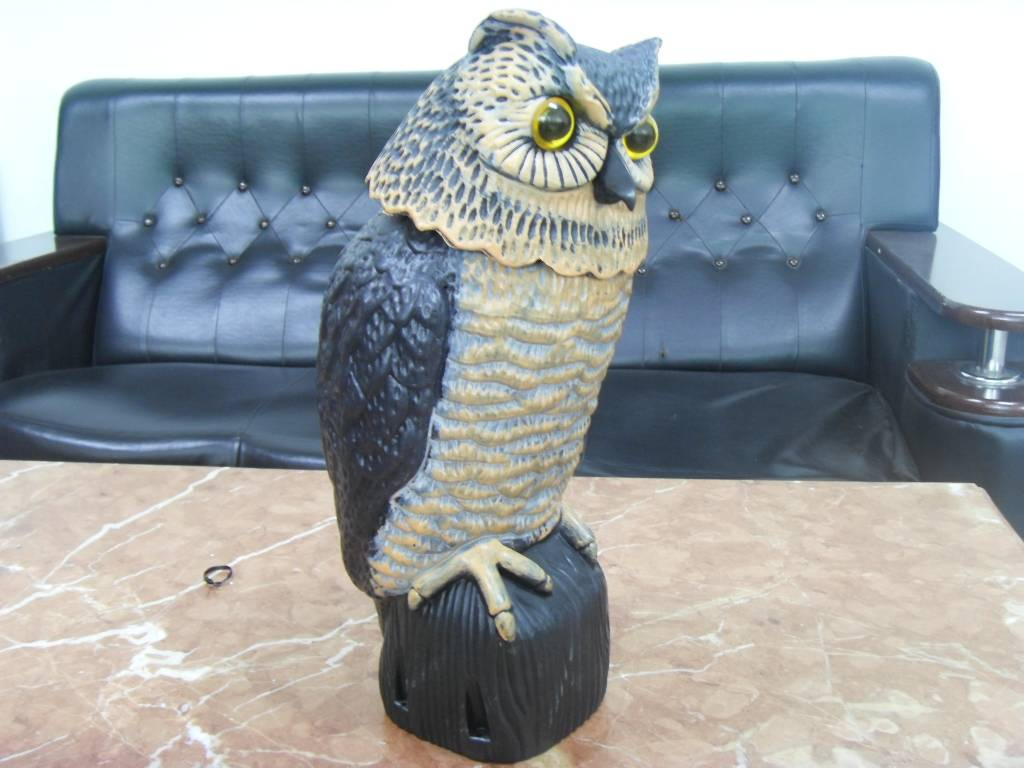 Owl decoy for hunting