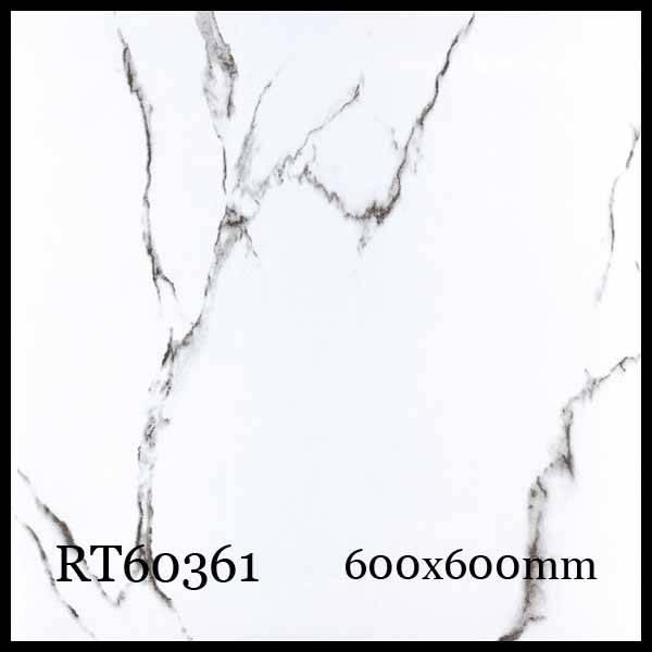 Glossy Porcelain tiles RT60361