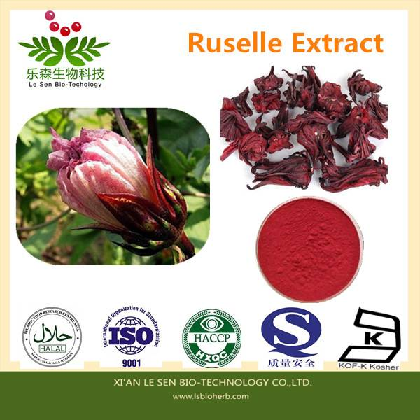Factory Supply Roselle Extract Anthocynidins 10%,20%30%UV