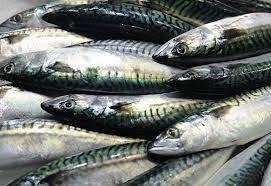 sell assorted sea foods and fishes