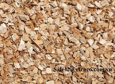 Wood chips for making paper