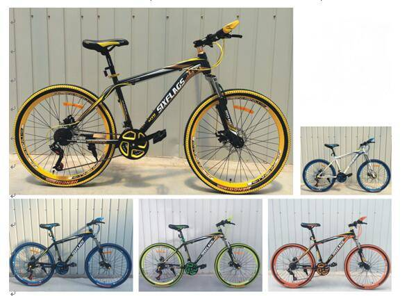 Children Bike (Mountain Bike for Kids)