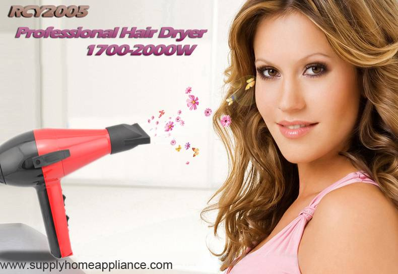 AC Motor Hair Blow Dryer Professional