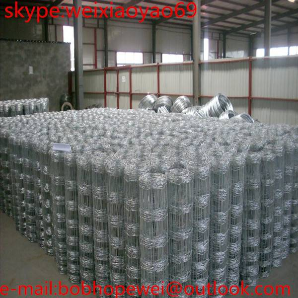 Professional Manufacturer of Welded Wire Mesh Panel