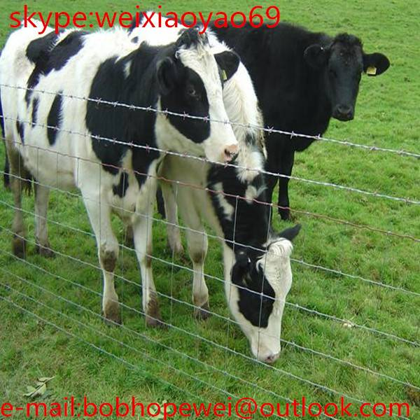 used corral panels/Cattle fence grassland fence wire mesh/Grassland wire mesh for protect animals