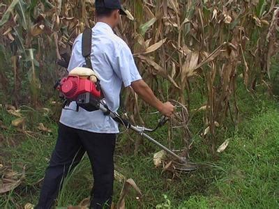 2015 Hot sale mini harvester, rice harvester, wheat harvester