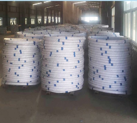 High Carbon Galvanized Steel Wire for Fishing net