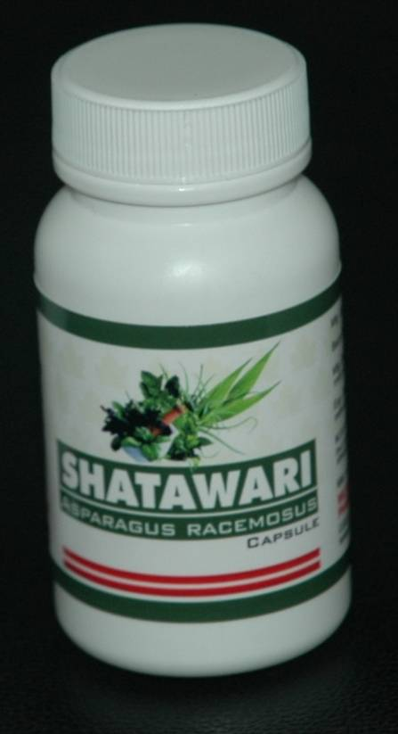 Herb Medicine  Shatawari (Asparagus Racemosus)