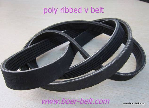 poly ribbed v belt for auto