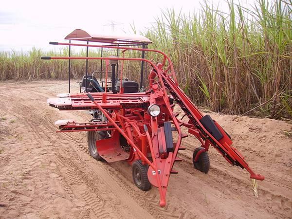 Combined sugarcane harvesting in india SH5II