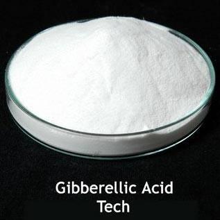 Gibberellic Acid ( GA3 )