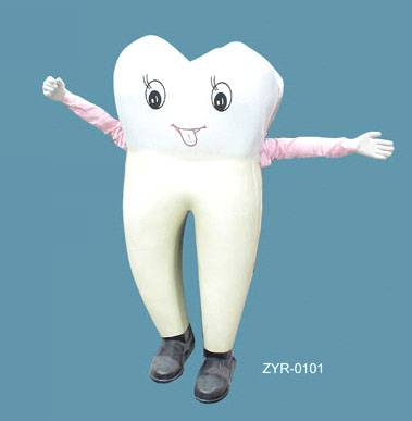 Tooth model:1.88m