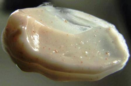 Oat Scrub Cream