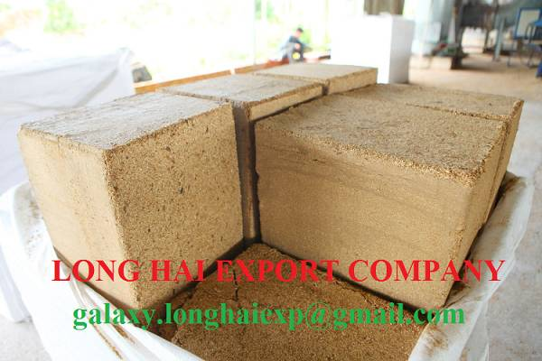 We export Sugar cane bagasse