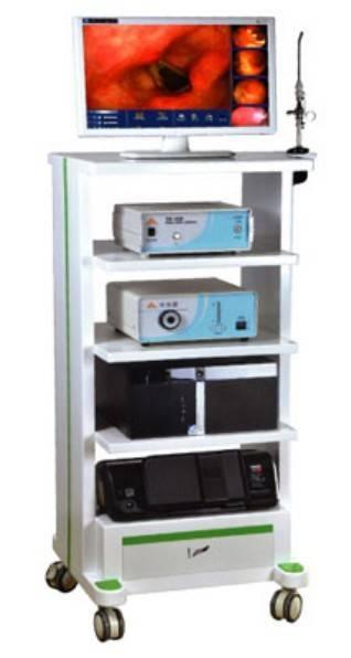 Endoscope Image System